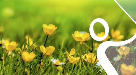 Llega la primavera a la OSC
